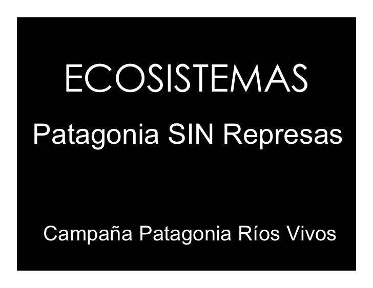 ECOSISTEMAS Patagonia SIN Represas   Campaña Patagonia Ríos Vivos