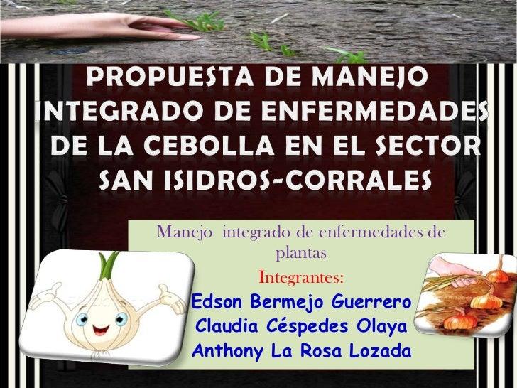 Manejo integrado de enfermedades de              plantas            Integrantes:   Edson Bermejo Guerrero   Claudia Césped...