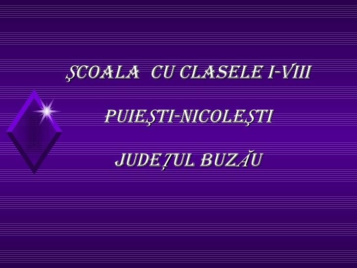 ŞCOALA  CU CLASELE I-VIII PUIEŞTI-NICOLEŞTI JUDEŢUL BUZĂU