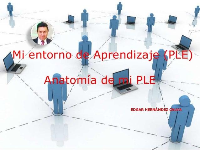 Mi entorno de Aprendizaje (PLE)  Anatomía de mi PLE  EDGAR HERNÁNDEZ CALVA