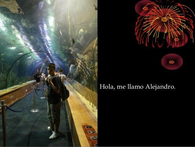 Hola, me llamo Alejandro.