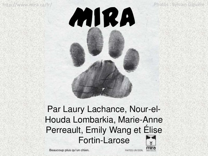 Photos : Sylvain Giguère<br />http://www.mira.ca/fr/<br />MIRA<br />Par Laury Lachance, Nour-el-HoudaLombarkia, Marie-Anne...