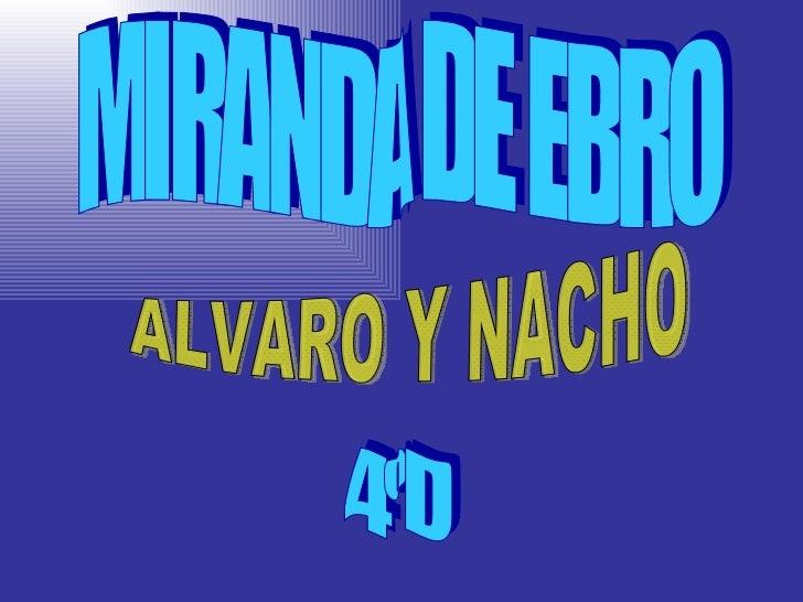 MIRANDA DE EBRO ALVARO Y NACHO 4ºD
