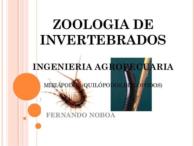 ZOOLOGIA DE INVERTEBRADOS INGENIERIA AGROPECUARIA MIRIÁPODOS (QUILÓPODOS,DIPLÓPODOS) FERNANDO NOBOA