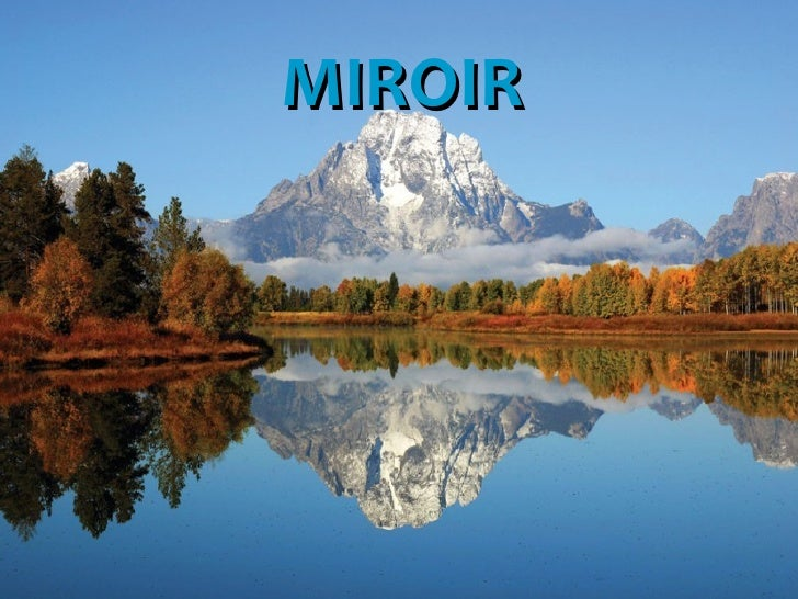 Miroir de la vie