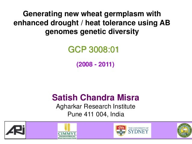 GRM 2013: Generating new wheat germplasm with enhanced drought / heat tolerance using AB genomes genetic diversity – SC Misra
