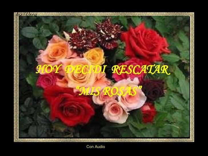 """Con Audio HOY  DECIDI  RESCATAR """" MIS ROSAS"""""""