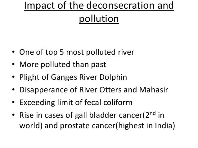 write a short essay on environmental pollution