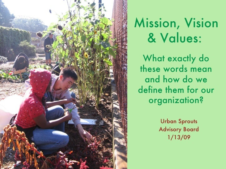 Mission, Vision & Values:   What exactly do these words mean and how do we define them for our organization? Urban Sprouts...