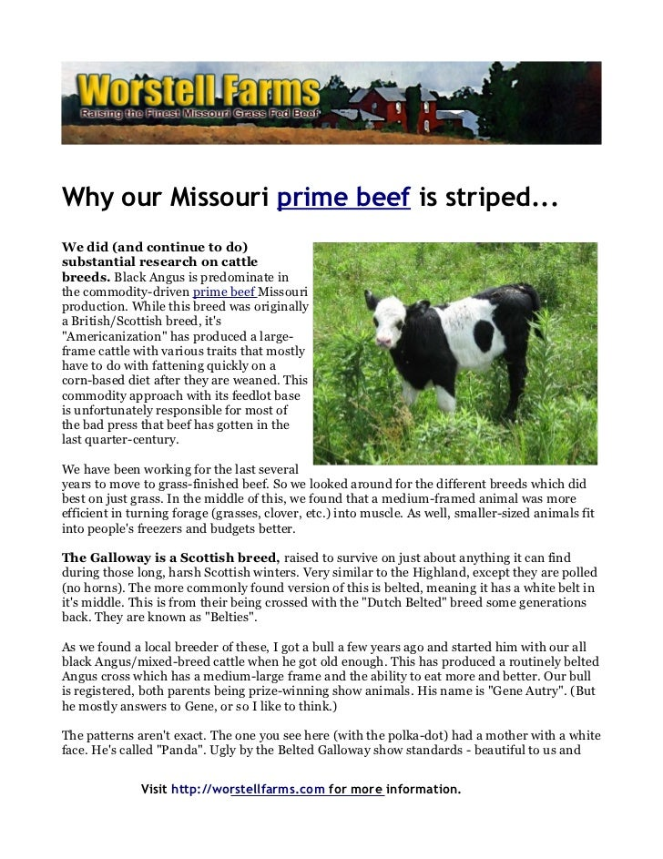 Why our Missouri prime beef is striped...We did (and continue to do)substantial research on cattlebreeds. Black Angus is p...
