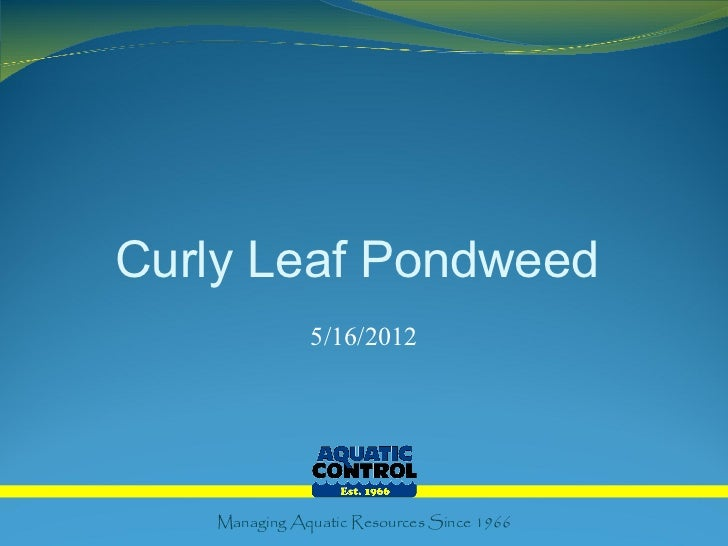 Curly Leaf Pondweed              5/16/2012   Managing Aquatic Resources Since 1966