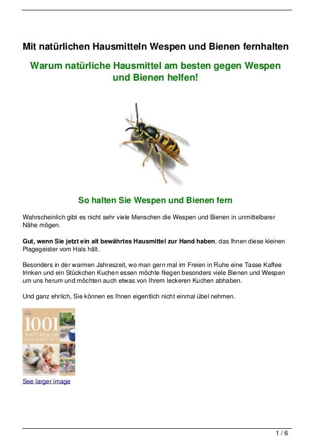 Mit natürlichen Hausmitteln Wespen und Bienen fernhalten  Warum natürliche Hausmittel am besten gegen Wespen              ...