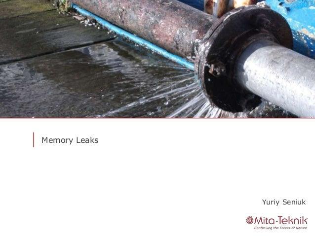 Mita community #18 Memory Leaks
