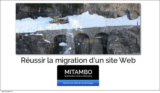 Réussir la migration d'un site Web MITAMBOOptimisation Contenu Marketing Survivre à la visite du zoo de Google photo glaci...