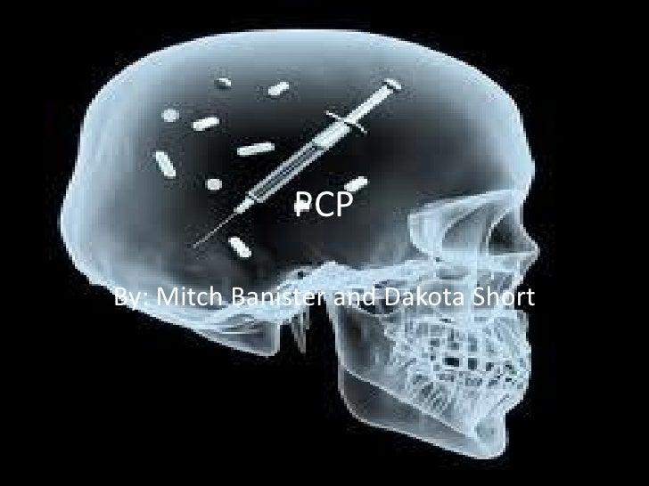 Mitch and Dakota PCP Digital Report, Spring 2012