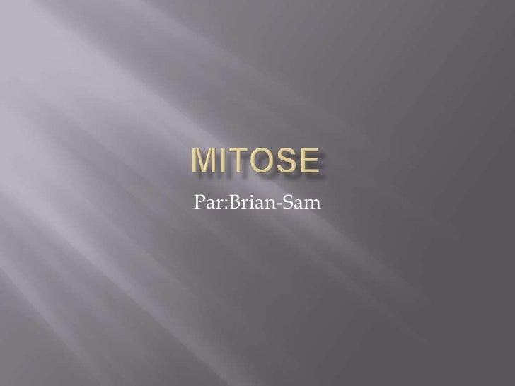 Mitose<br />Par:Brian-Sam<br />