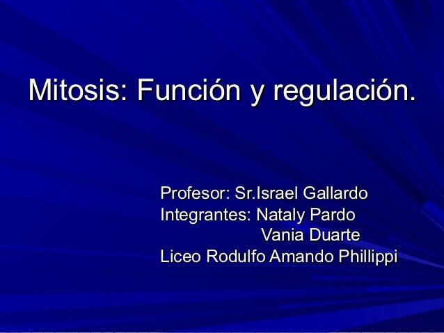 Mitosis: Función y regulación.          Profesor: Sr.Israel Gallardo          Integrantes: Nataly Pardo                   ...