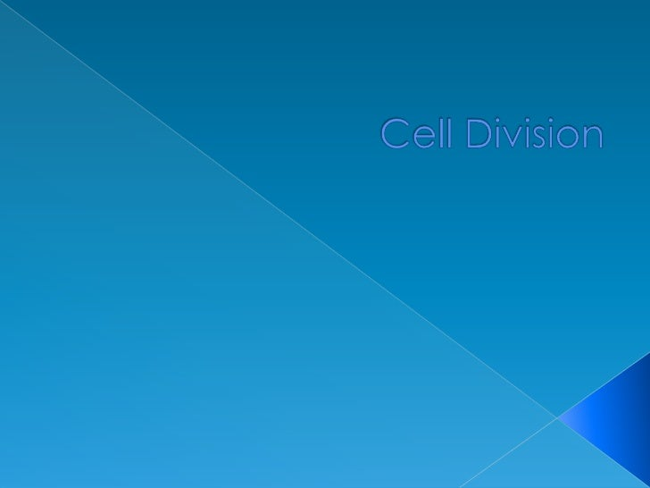 Cell Division<br />