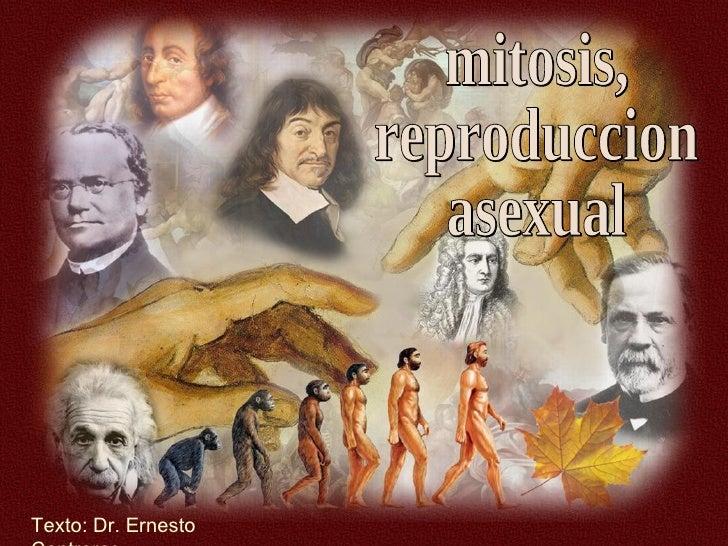 Mitosis Reproduccion Asexual