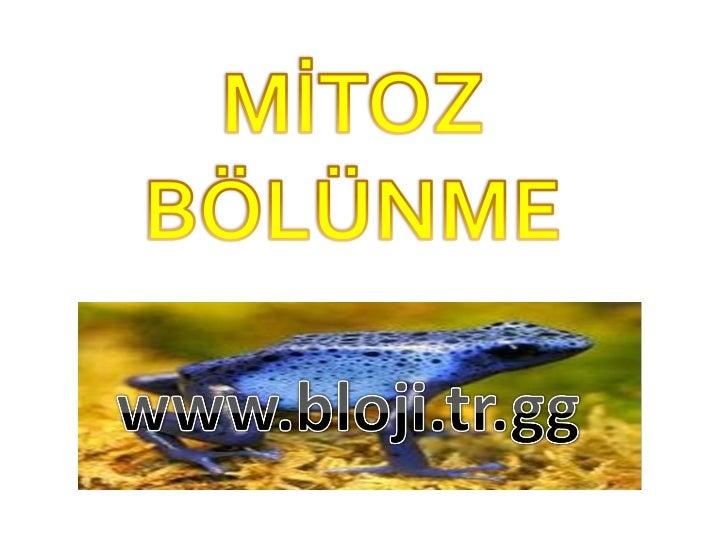    Mitoz ya da mitosis,    bir hücrenin kendi genomunu eşleyerek iki    yavru hücre şeklinde bölünmesidir.   Genellikle ...
