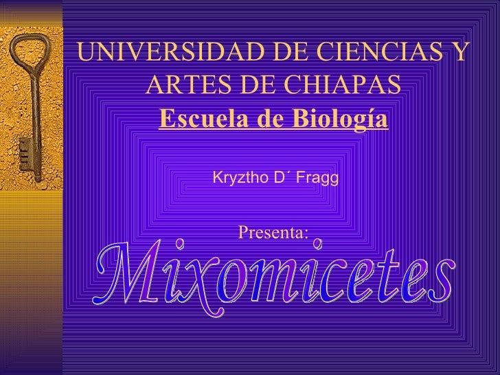 UNIVERSIDAD DE CIENCIAS Y ARTES DE CHIAPAS Escuela de Biología  Kryztho D´ Fragg Presenta: Mixomicetes