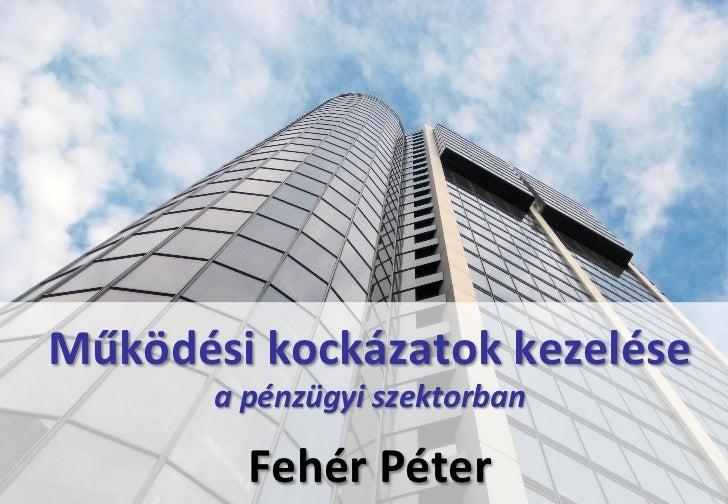 Működési kockázatok kezelése               a pénzügyi szektorban 2012.01.19.                                ...