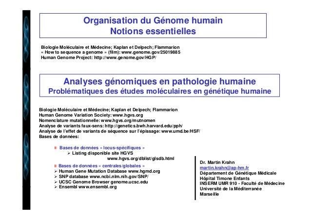 Organisation du Génome humain  Notions essentielles  Biologie Moléculaire et Médecine; Kaplan et Delpech; Flammarion  « Ho...