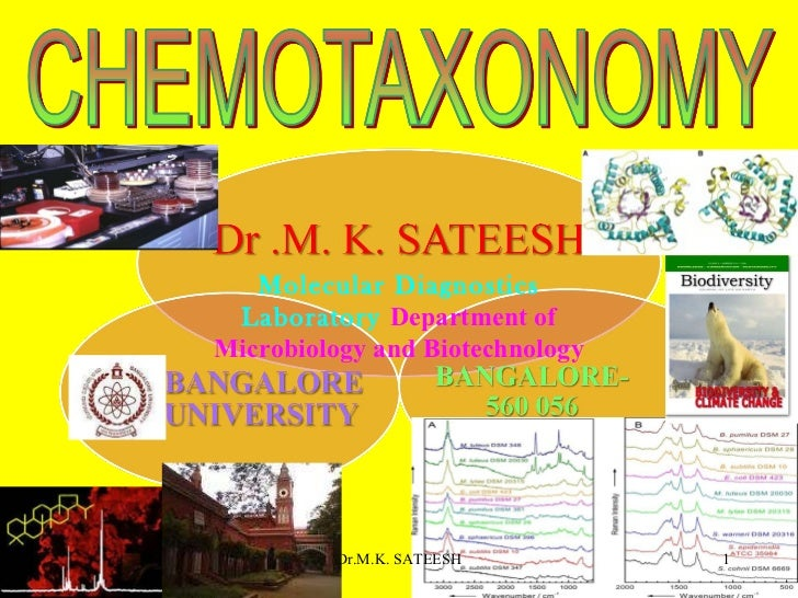 Molecular Diagnostics Laboratory  Department of Microbiology and Biotechnology Dr.M.K. SATEESH