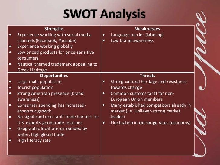 language analysis sample essay
