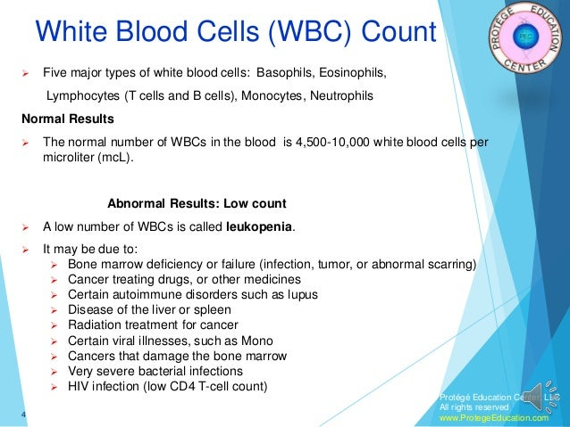 white blood cells essays White blood cells bacteria exist everywhere in the environment and have continuous access to the body through the mouth, nose and pores of skin further more, many cells age and die daily and their remains must be removed, this is where the white blood cell plays its role according to this quotation, without white blood.
