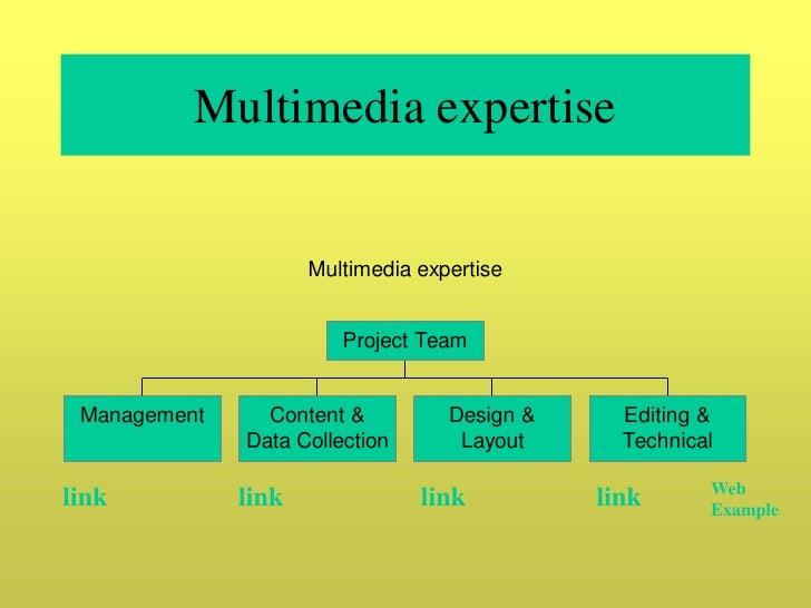 Multimedia expertise                        Multimedia expertise                           Project Team    Management     ...