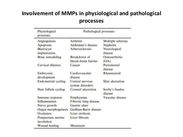 matrix metalloproteinases essay Matrix metalloproteinases and tissue inhibitors of metalloproteinases structure, function, and biochemistry.