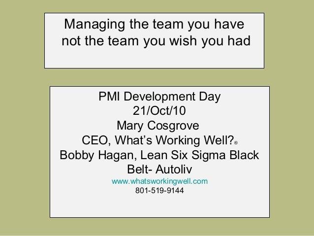 Team Assessment project management