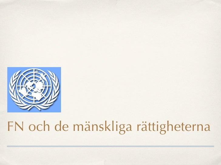 FN och de mänskliga rättigheterna