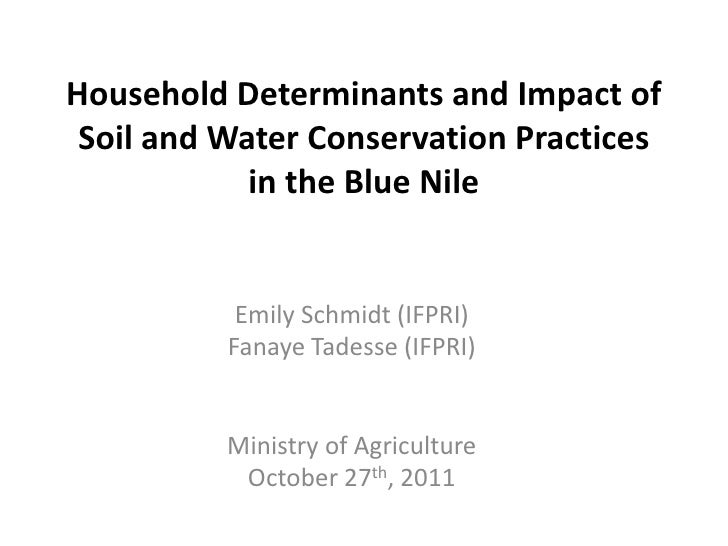 Household Determinants and Impact of Soil and Water Conservation Practices in the Blue Nile