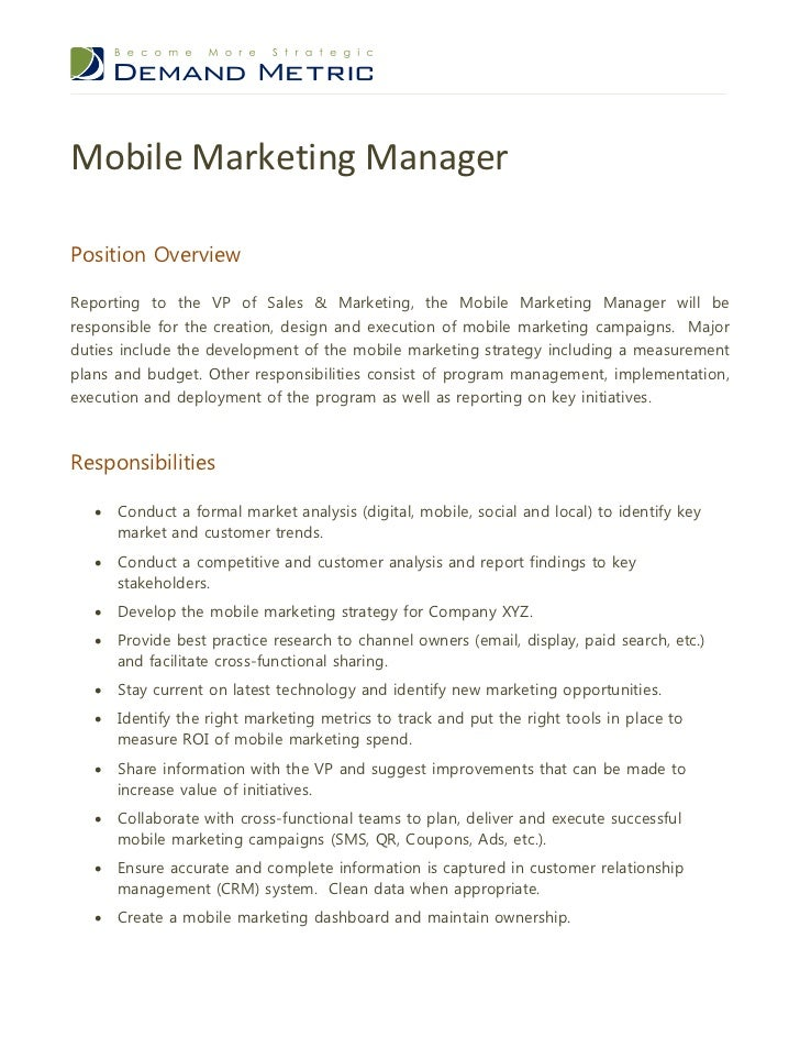 sales manager summary