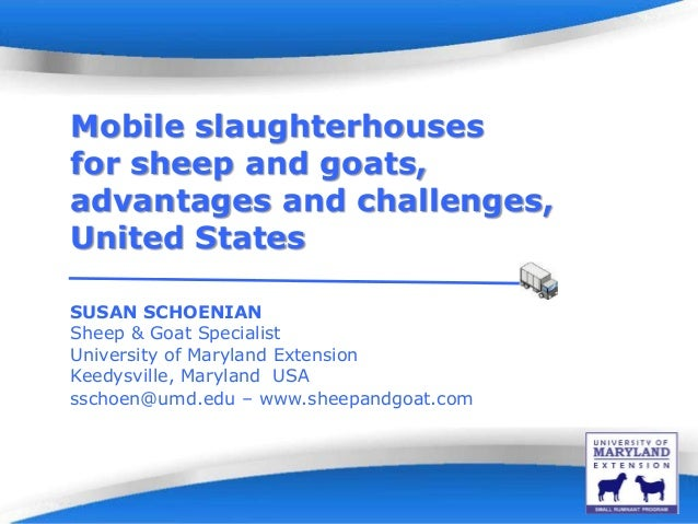 Powerpoint Templates Page 1Powerpoint Templates Mobile slaughterhouses for sheep and goats, advantages and challenges, Uni...