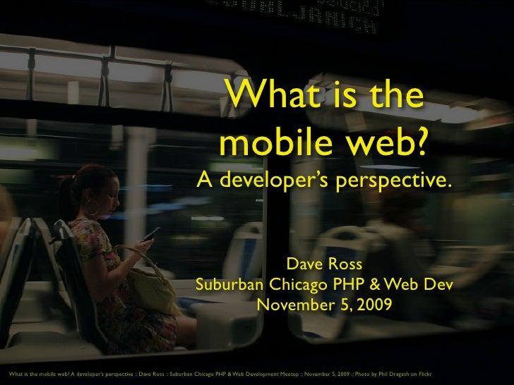 The Mobile Web: A developer's perspective
