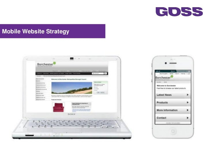 Mobile Website Strategy                          1