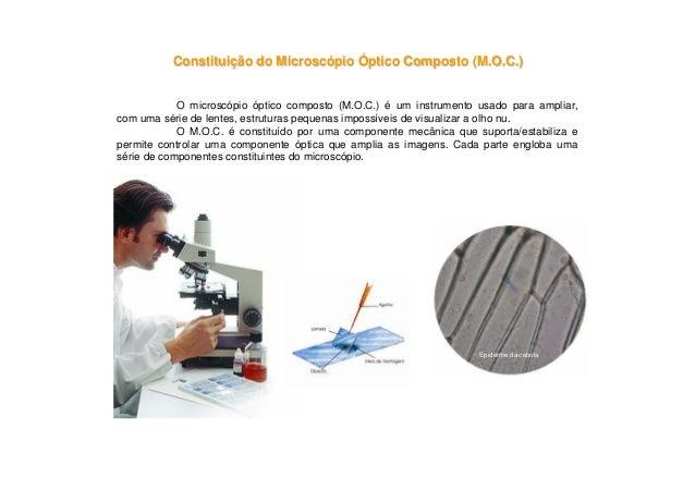 ConstituiConstituiçção do Microscão do Microscóópiopio ÓÓptico Composto (M.O.C.)ptico Composto (M.O.C.)O microscópio óptic...