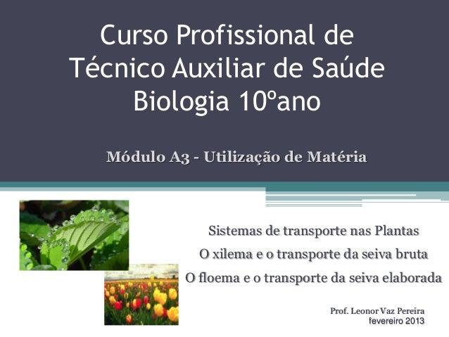 Curso Profissional deTécnico Auxiliar de SaúdeBiologia 10ºanoSistemas de transporte nas PlantasO xilema e o transporte da ...