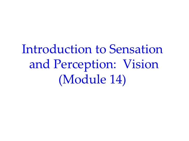 Introduction to Sensation and Perception: Vision      (Module 14)