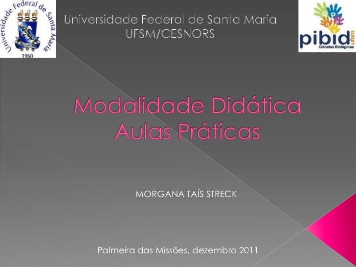 MORGANA TAÍS STRECKPalmeira das Missões, dezembro 2011