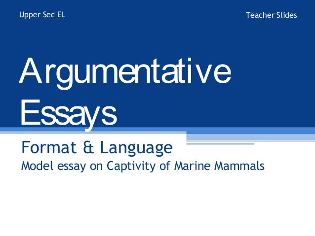 An Argumentative Essay Structure