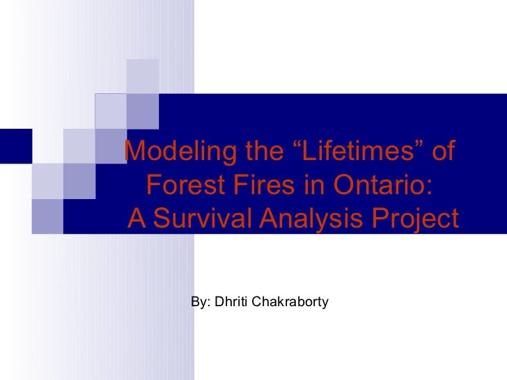 Modeling of lifetimes of forest fires