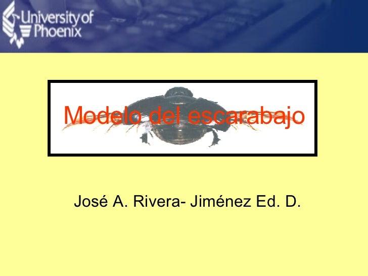 Modelo del escarabajo José A. Rivera- Jiménez Ed. D.
