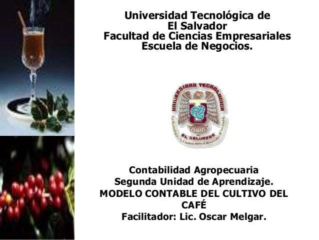Contabilidad Agropecuaria Segunda Unidad de Aprendizaje. MODELO CONTABLE DEL CULTIVO DEL CAFÉ Facilitador: Lic. Oscar Melg...