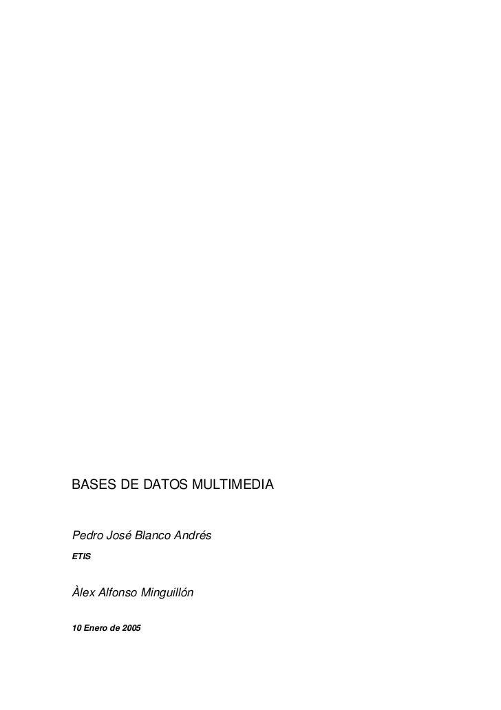 BASES DE DATOS MULTIMEDIAPedro José Blanco AndrésETISÀlex Alfonso Minguillón10 Enero de 2005