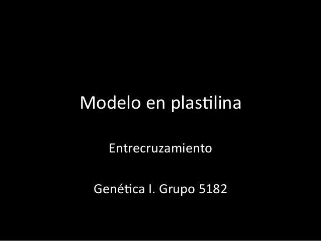 Modelo  en  plas+lina     Entrecruzamiento      Gené+ca  I.  Grupo  5182
