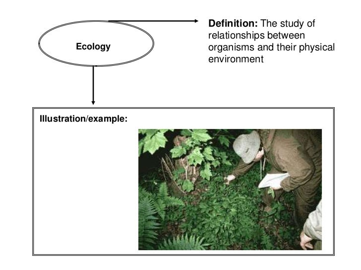 Definition: The study of                        relationships between        Ecology         organisms and their physical ...